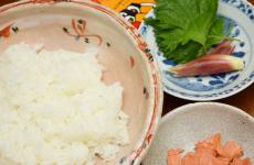 夏のお手軽寿司(材料)